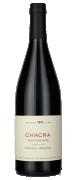 2010 Chacra Treinta y Dos (1932) Pinot Noir Patagonia